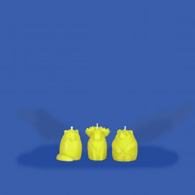 Beeswax Woodland Trio Candle Set