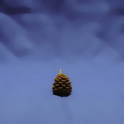 Beeswax Small Pine Cone Candle
